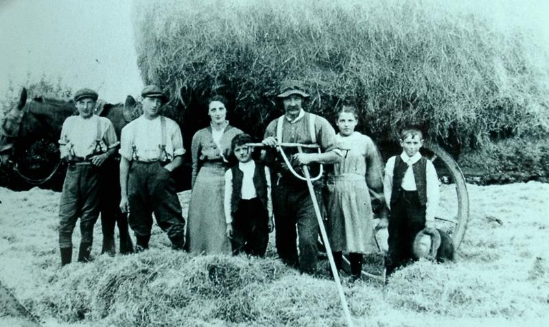 Farming Hay Raking Family