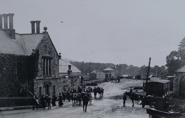 Horses And Carts In Street1