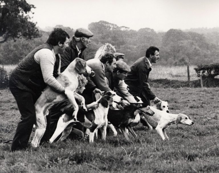 Hound Trials Just Before Start 1988