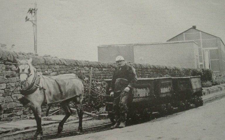 Mining Horse And Wagons Electric Lamps 1940